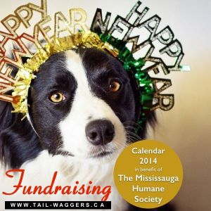 Tail-Waggers Frundraising Event Calendar 2014