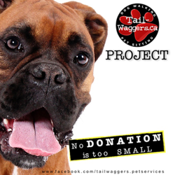Tail-Waggers project makes monthly donations on behalf of our clients to shelters and charity events using the money from dog walking services.