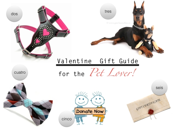 Valentines Gift Guide